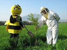 טו בשבט בדבורת התבור