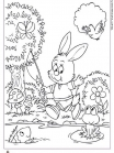 rabbit-and-friends