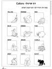 דף העשרה צבעים באנגלית